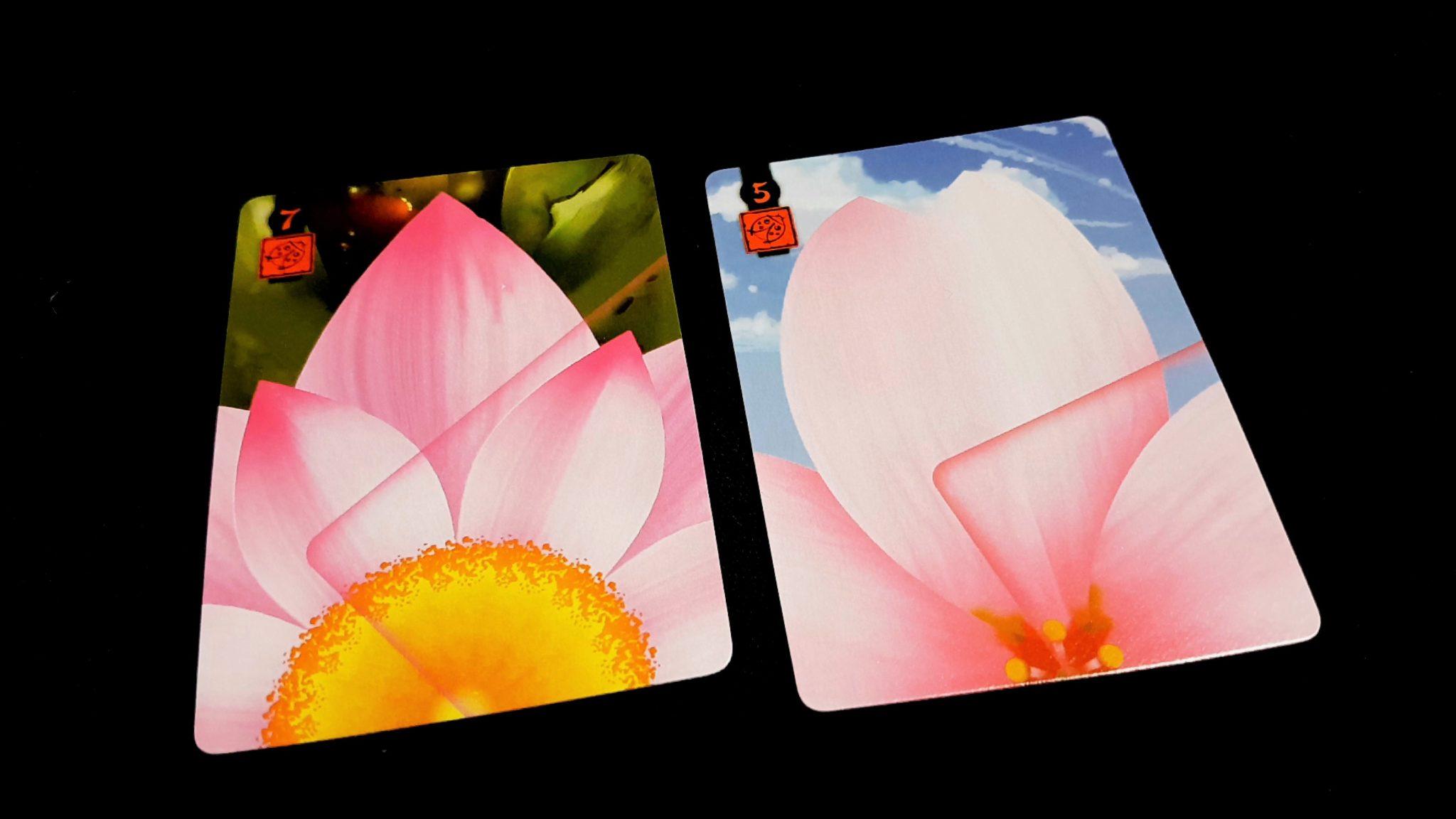 Similar coloured cards