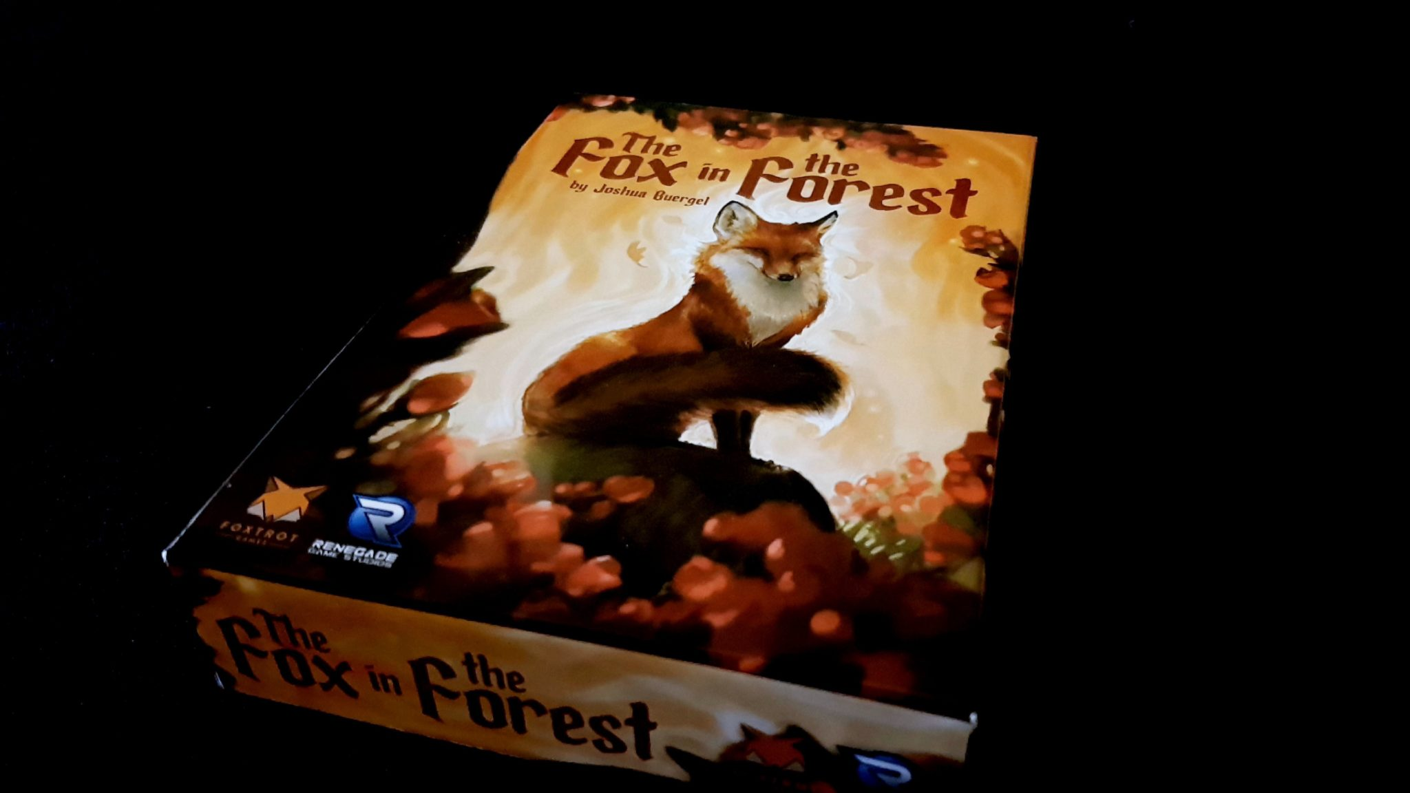 Fox in the Forest box