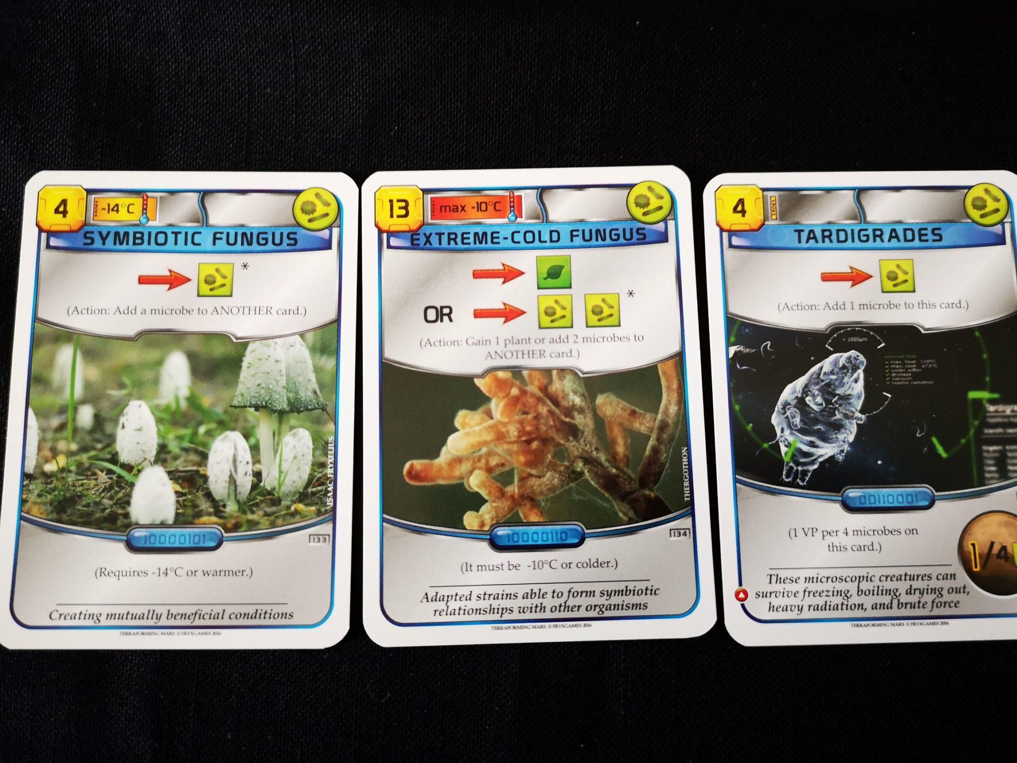 Tardigrades card